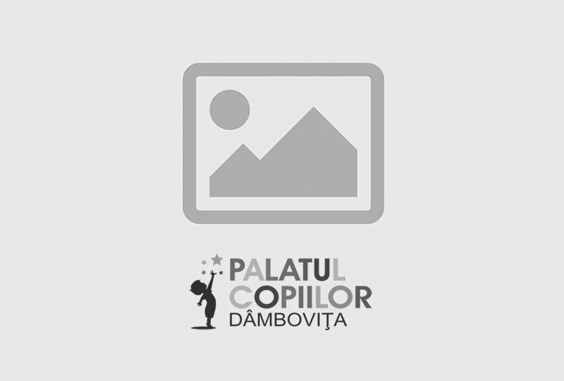 Buget Rectificativ 2018 – 13.11.2018